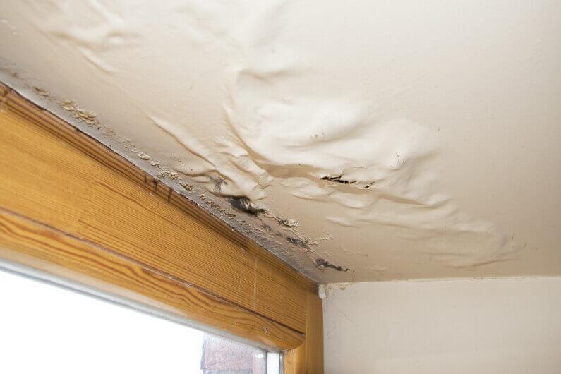 Tricks for Detecting Water Leaks in Houses